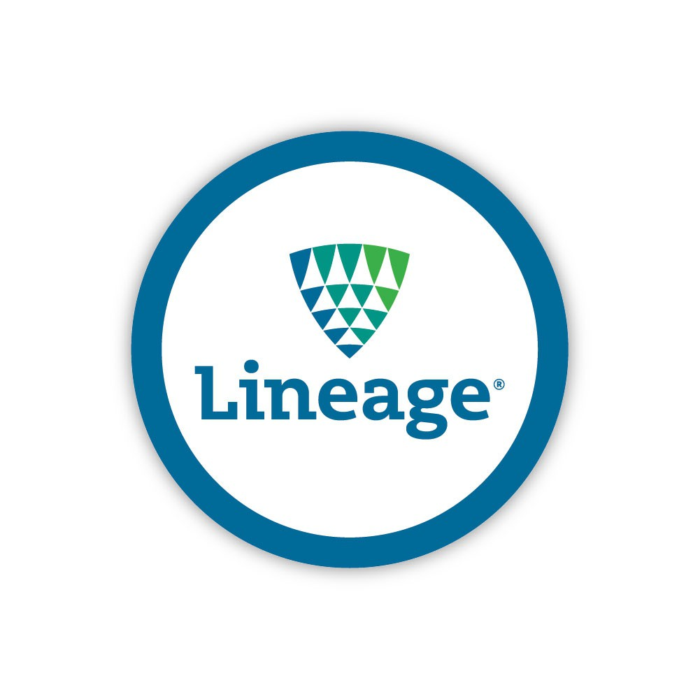 """Lineage 2.5"""" Patch - Text"""