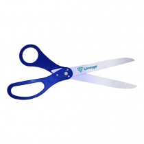 Silver Ceremonial Scissors